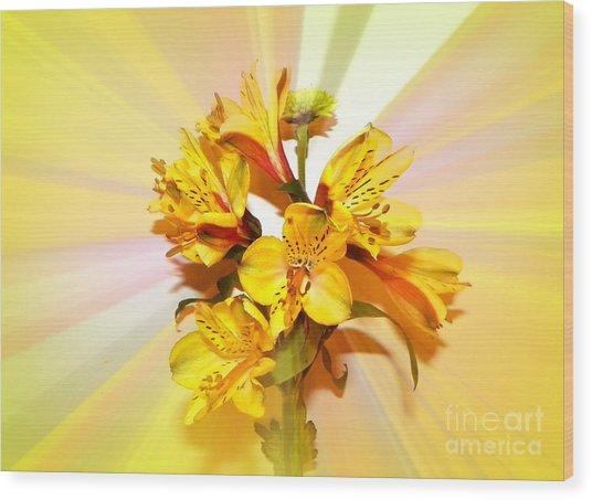 Bright As The Sun Wood Print by Carol Grenier