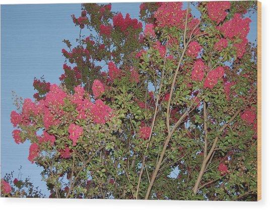 Bright Pink Floral Tree Wood Print
