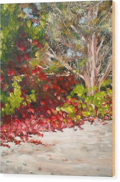 Bright Red By The Beach Wood Print