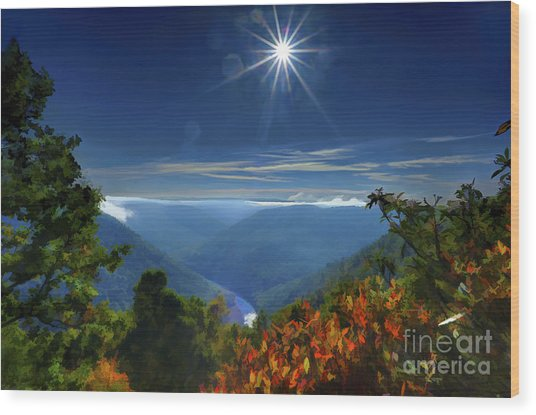 Bright Sun In Morning Cheat River Gorge Wood Print