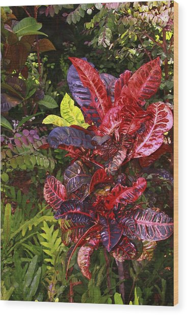 Brilliant Colors Of Leaves Wood Print
