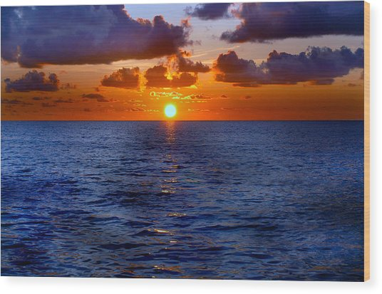 Brilliant Sunset Wood Print by Donna Proctor