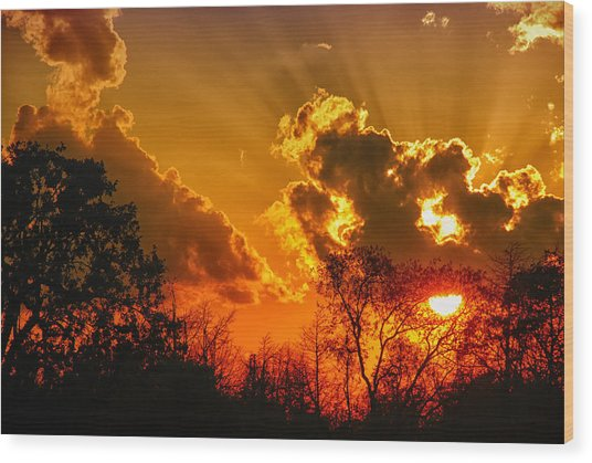 Brilliant Sunset Wood Print