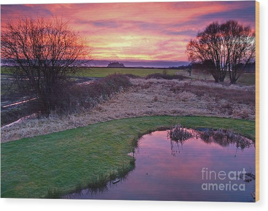 Brilliant Sunset With Pond Landscape Wood Print