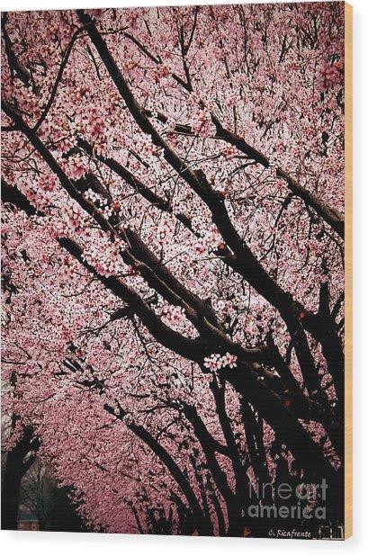 Bring On Spring Wood Print