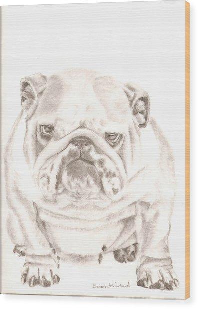 British Bulldog Winnie Wood Print