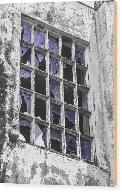 Broken Windows With Birds Wood Print