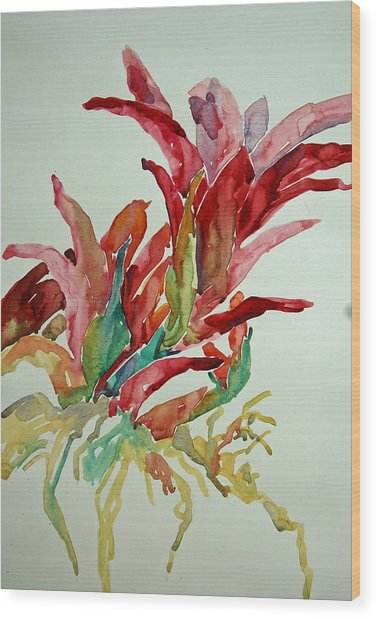 Bromeliad #2 Wood Print