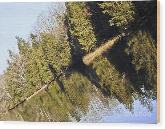 Bronson's Pond Wood Print