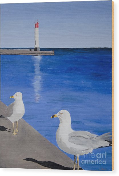Bronte Lighthouse Gulls In Oil Wood Print