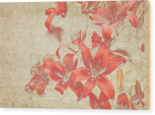 Bronze Lily Grunge Wood Print by Lesley Rigg