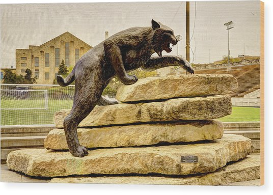 Kansas State Bronze Wildcat Wood Print