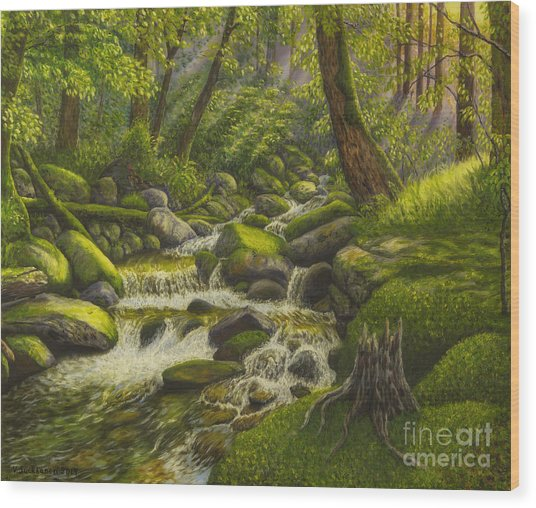 Brook In The Forest Wood Print