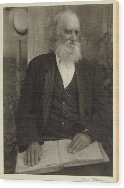 Brother William Of The Shaker Settlement Wood Print