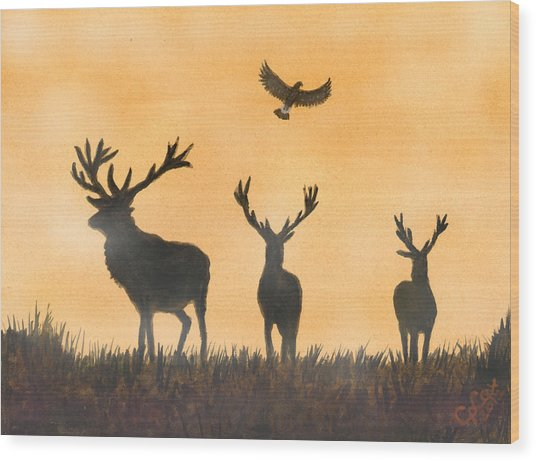 Brothers In Arms And The Fly Past Salute Wood Print