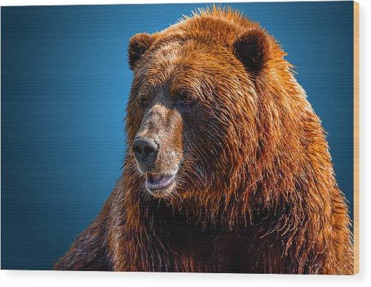 Brown Bear 2 Wood Print
