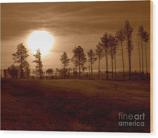 Brown Fog Wood Print