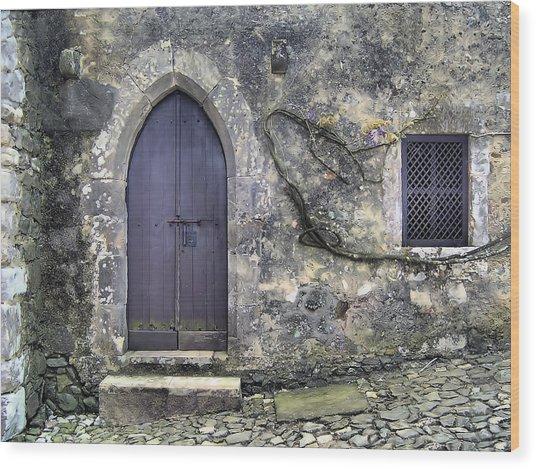 Brown Rustic Wood Door Of Medieval Europe Wood Print