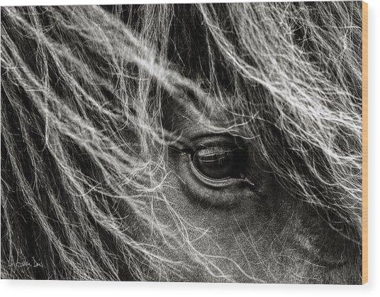 Brunn Stjarna Wood Print