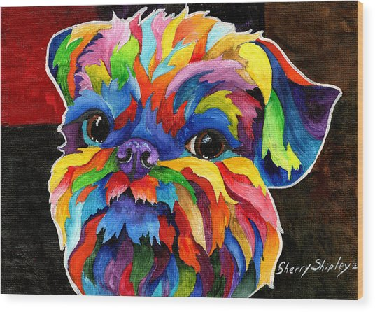 Brussels Griffon Wood Print