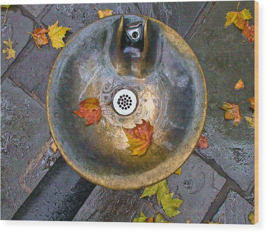 Bryant Park Fountain In Autumn Wood Print