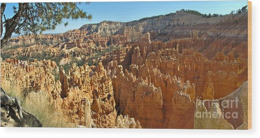 Bryce Afternoon Wood Print