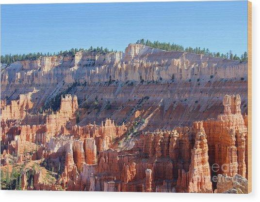 Bryce Amphitheater Wood Print
