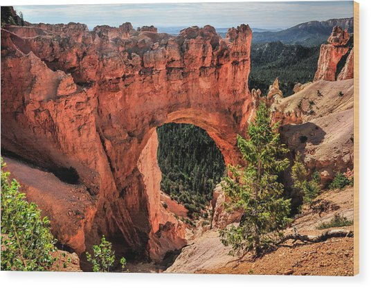 Bryce Canyon Arches Wood Print