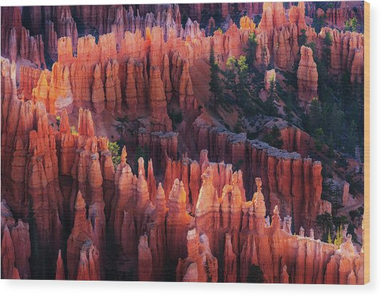 Bryce Canyon At Sunset Wood Print by ??? / Austin