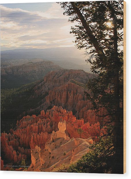 Bryce Canyon Early Morning View Wood Print
