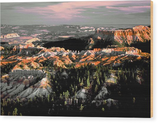 Bryce Canyon In Evening Light Wood Print