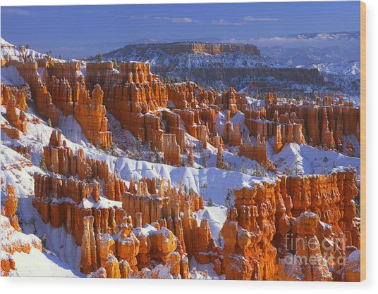 Bryce Canyon In Winter Wood Print