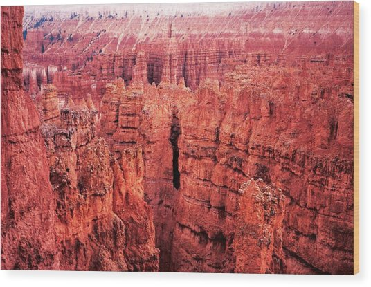 Bryce Canyon Red Wood Print