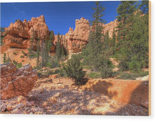 Bryce Canyon Utah Wood Print