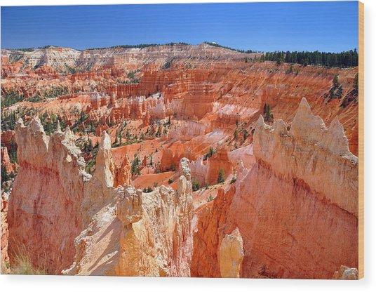 Wood Print featuring the photograph Bryce Canyon Utah by Matthew Chapman