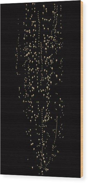 Bubble Champagne Wood Print by Jamesachard