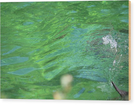Bubble In The Pool Wood Print