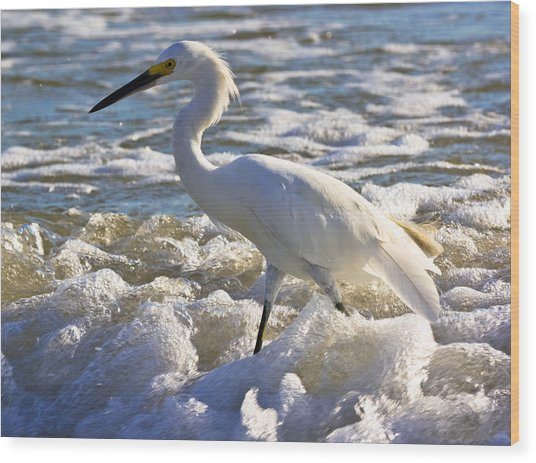 Bubbles Around Snowy Egret Wood Print