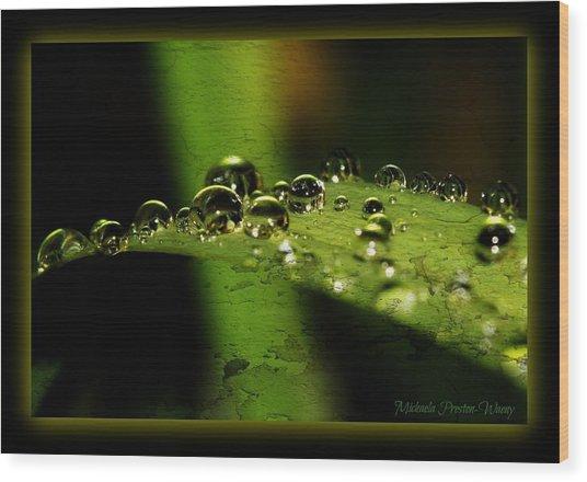 Bubbly Wood Print