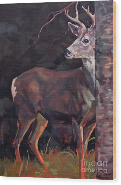 Buck At Sullivan Wood Print