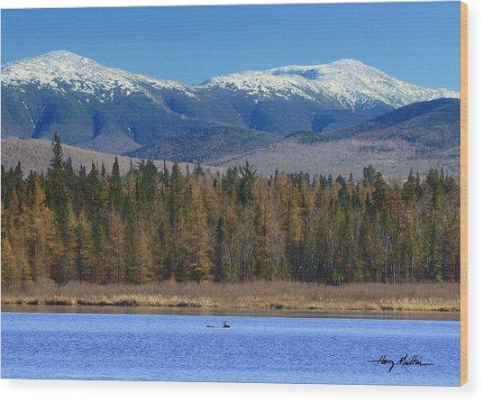 Buck Crossing Cherry Pond Wood Print