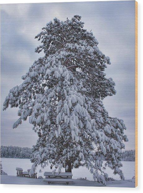 Buck Lake Flocked Pine Wood Print