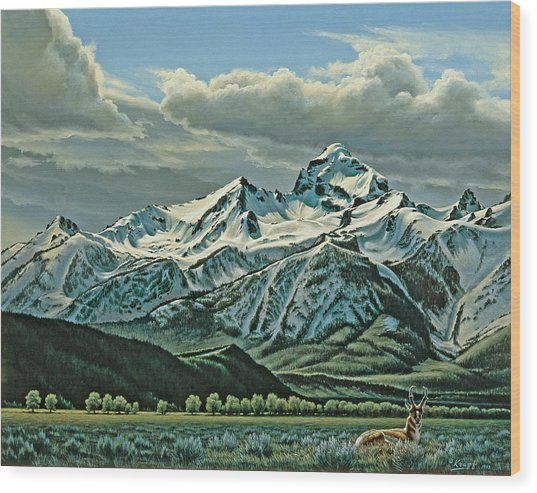 Buck Mountain From Antelope Flat Wood Print