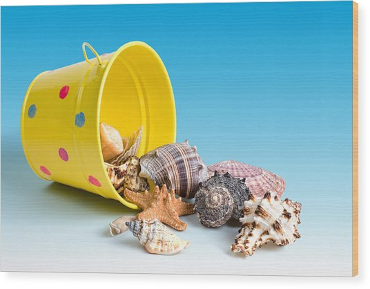 Bucket Of Seashells Still Life Wood Print