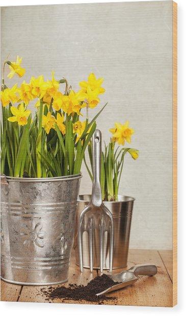 Buckets Of Daffodils Wood Print