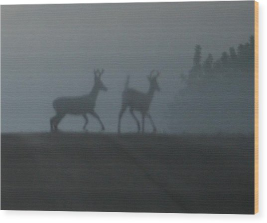 Bucks In Fog Wood Print