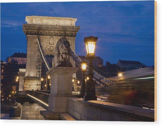 Budapest Bridge With Lion Wood Print