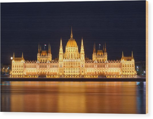 Budapest Parliament Wood Print by Ioan Panaite