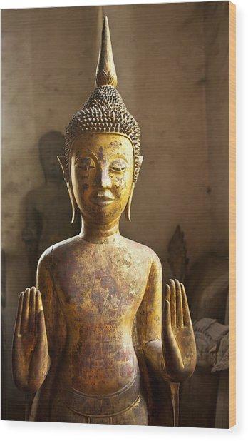 Buddhist Statues G - Photograph By Jo Ann Tomaselli  Wood Print
