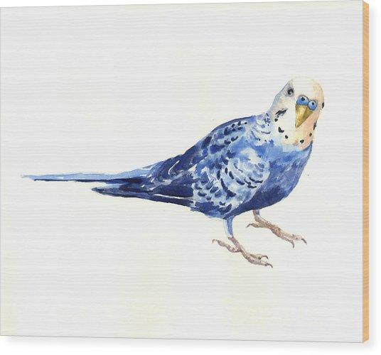 Budgie Bow Wood Print